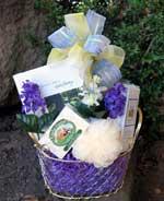 Pamper mini gift basket