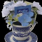 Blue Willow tea cup gift arrangment