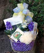 Pamper mini gift basket