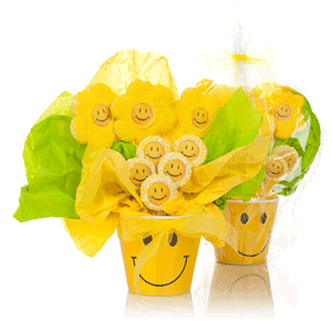Smiley Flower Pot of Cookies