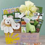 Welcome Baby Sunshine Gift Basket