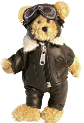 Pilot Teddy Bear